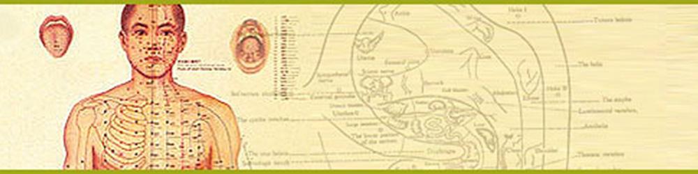 akupunktúra pontok