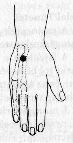 milyen vitaminokat inni ízületi betegségek esetén fájdalom a lábakban karok gerinc ízületeiben